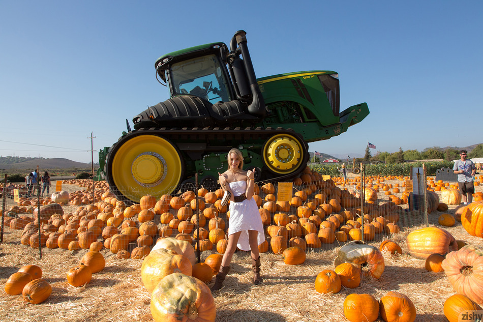 Kenna James Pumpkin Patch - 1